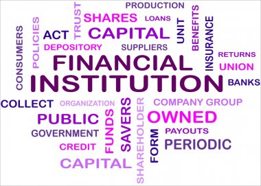 FINANCIAL INSTITUTION - word cloud