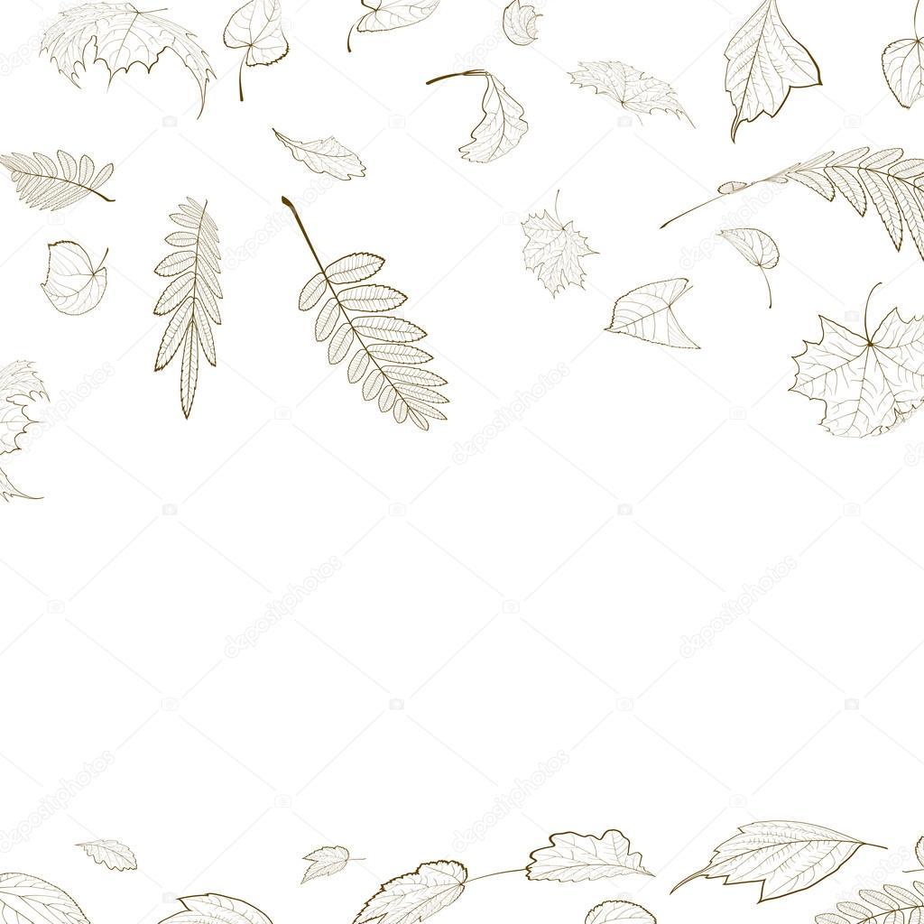 fall leaf skeletons autumn design template stock vector