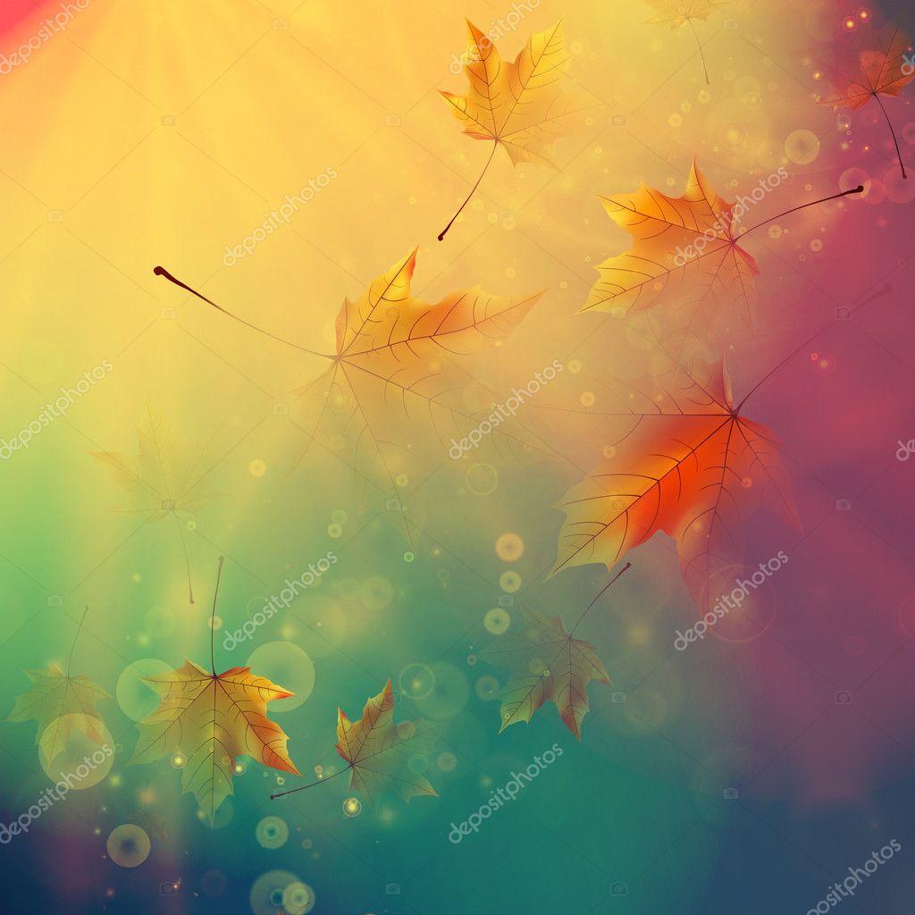 Orange maple leaves. Autumn concept.