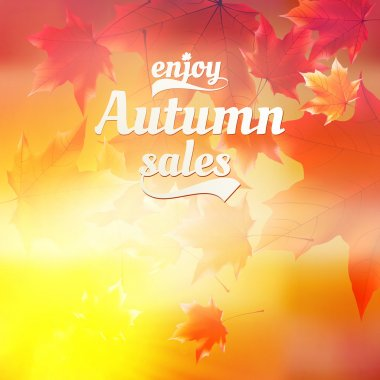 Autumn sale realistic Leaves typography poster.