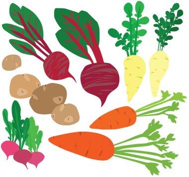 Stylish Healthy Winter Vegetable Set