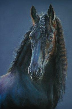 Frisian horse portrait