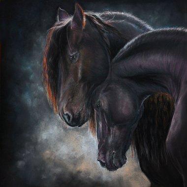 Portrait of two frisian horse