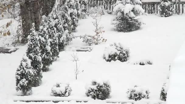 ranní sněžení