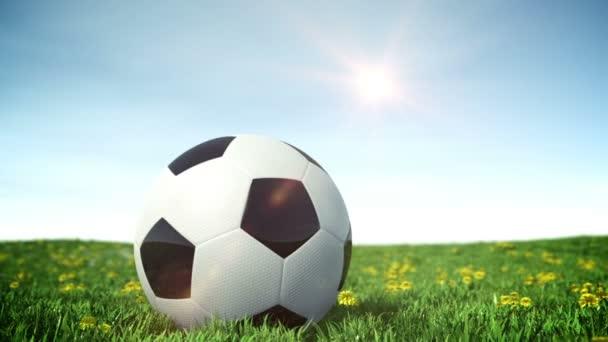 futball-labda, zöld fű mező