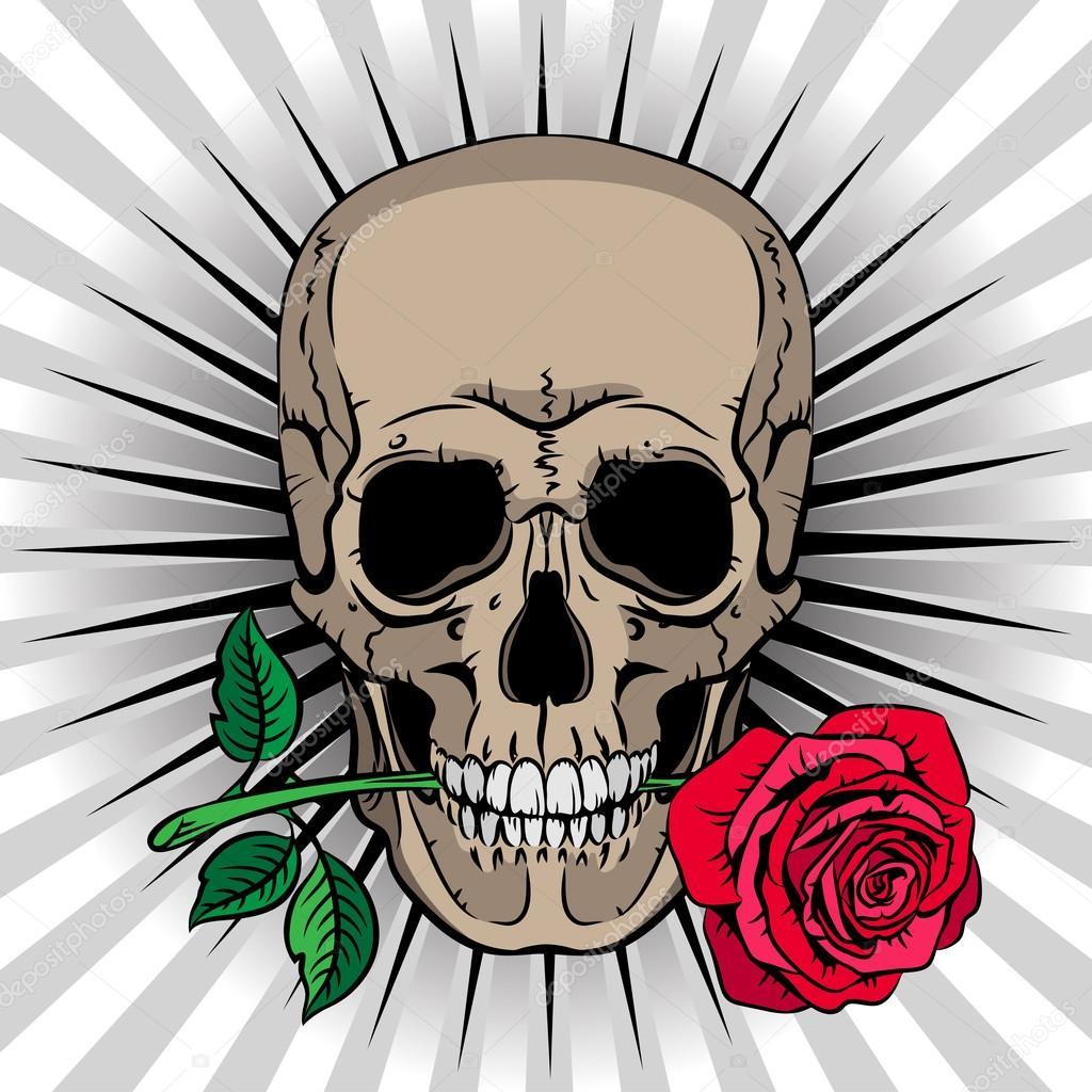 Teschio con una rosa in bocca su sfondo a righe , foto tatuaggio teschio  con rosa in bocca \u2014 Vettoriali di
