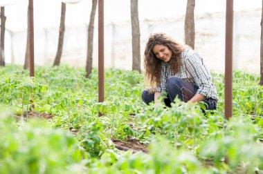 Female garden worker planting seedlings