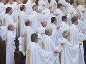 Maynooth college, maynooth, kildare, Irsko, 1 2014,15 seminaristů byli vysvěceni diakonie v maynooth škola 1