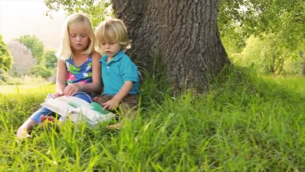 Brother and sister reading a book in the park