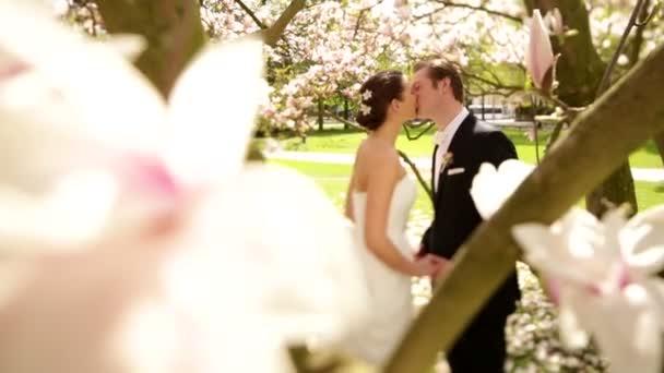 Wedding couple kissing under magnolia tree
