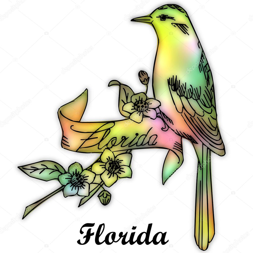 florida state bird stock photo 51256855