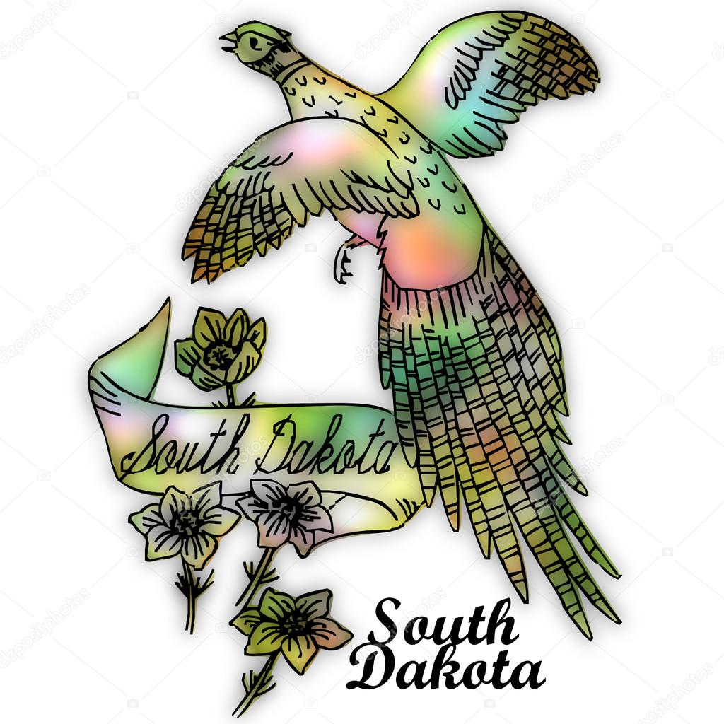 south dakota state bird stock photo 51257669