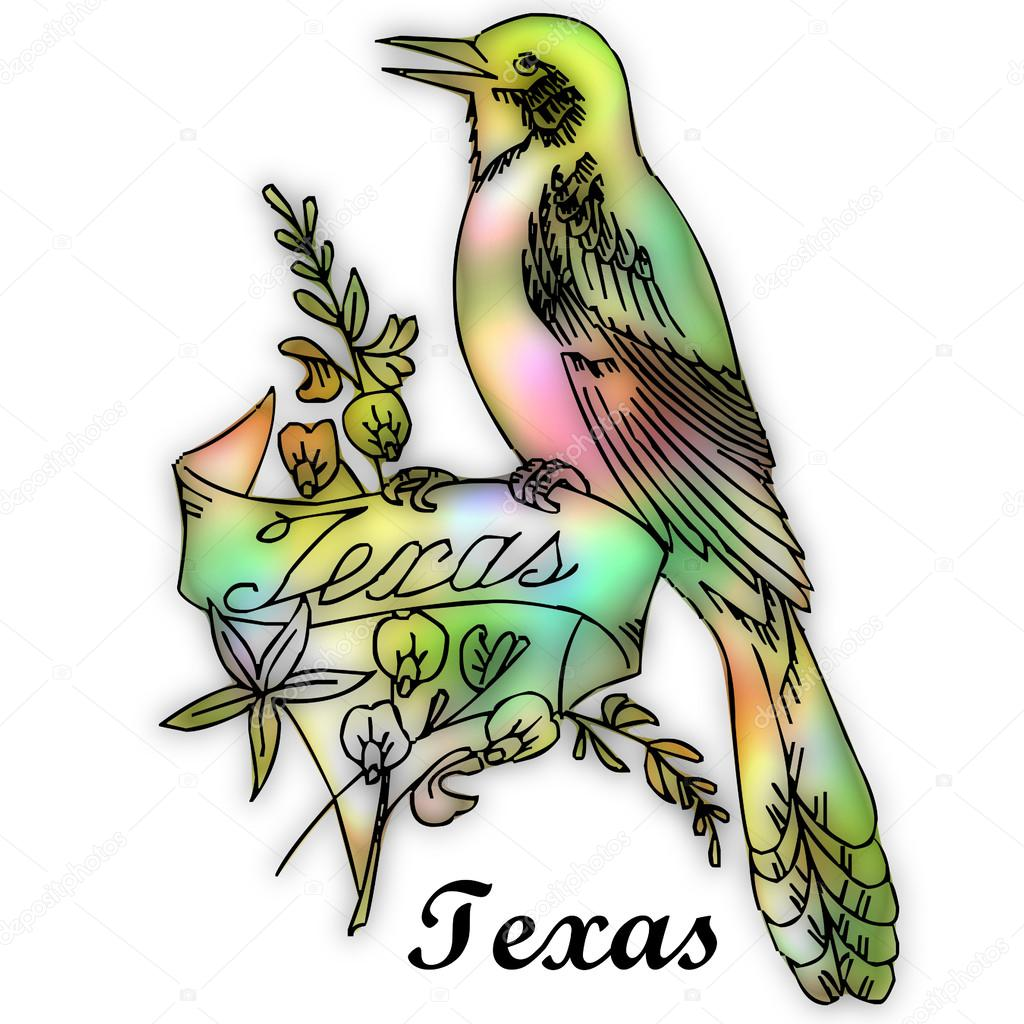 texas state bird stock photo 51257671