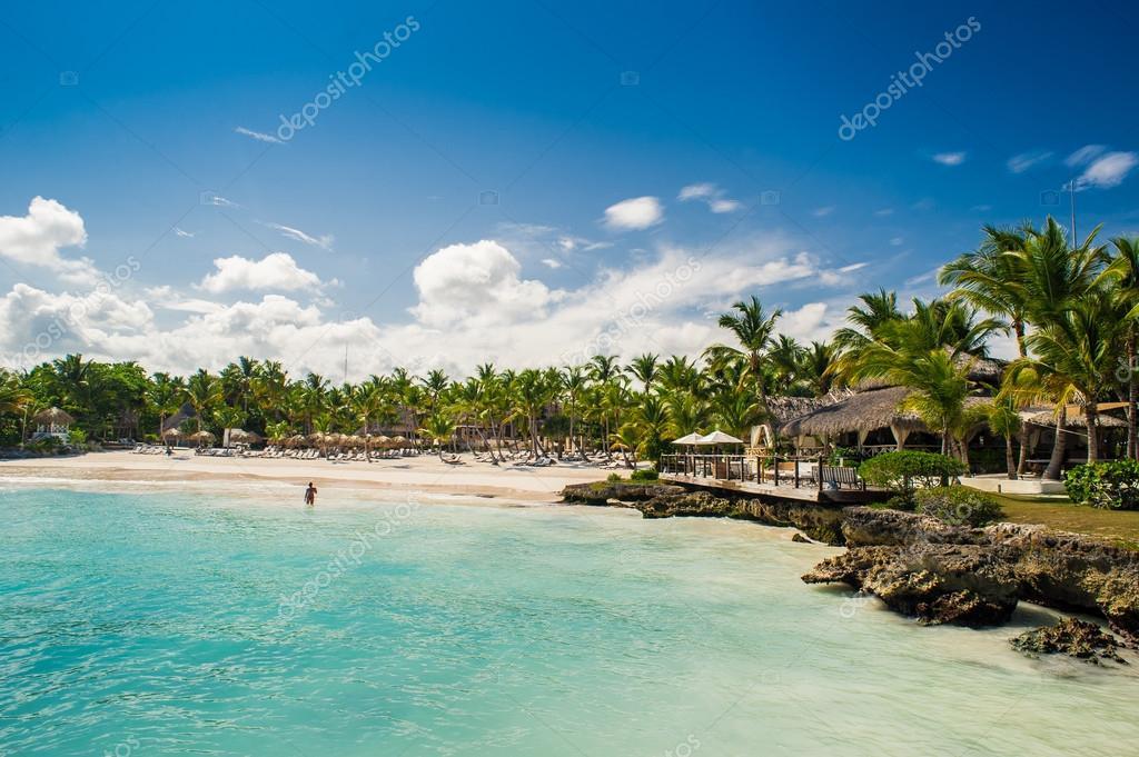 Spiaggia di palma e tropicali nel paradiso tropicale for Disegni di casa sulla spiaggia tropicale