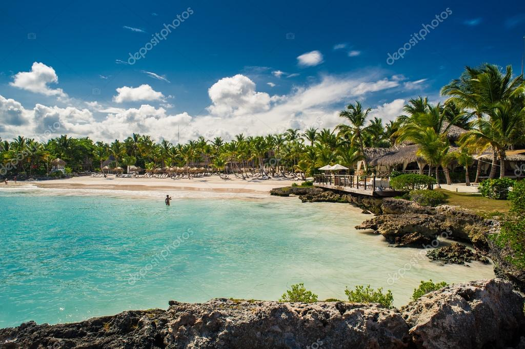 Palm and tropical beach in Tropical Paradise
