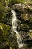 horský potok teče dolů z hor.