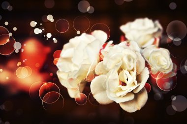 Roses in vintage style