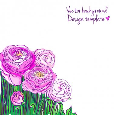 Illustration with blooming ranunculus