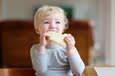 Little toddler girl having sandwich for breakfast