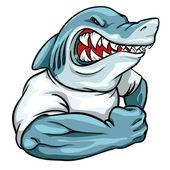 Fotografia mascotte di squalo, progettazione del logo squadra