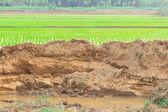v obci a část půdy. eroze v důsledku vodní eroze