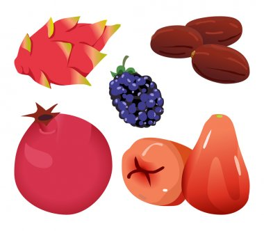 Dates, Dragonfruit, blackberry, Pomegranate, and Rose Apple