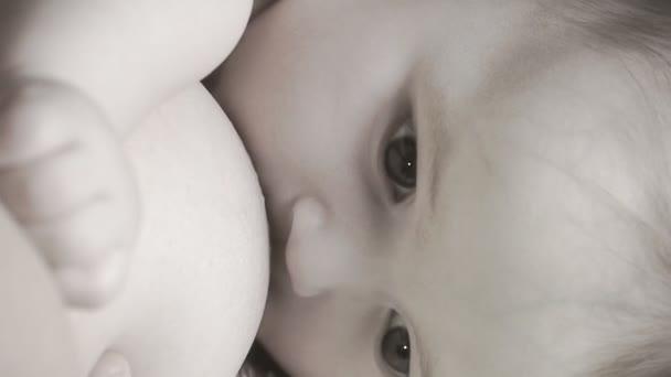 kojení