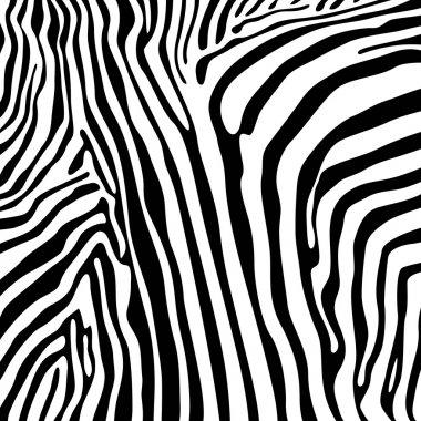Zebra textures