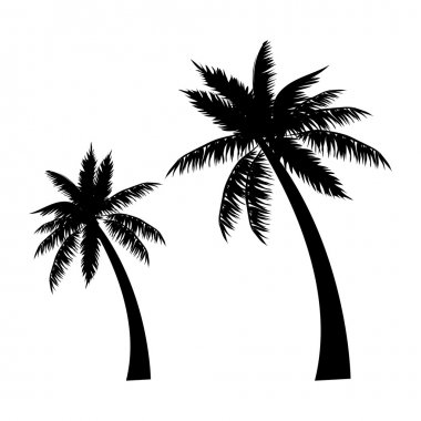 Tropical palm trees, black