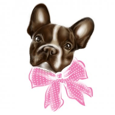Painted brown french bulldog with a pink bow with white polka dots. Children's drawing. Sad, expressive eyes. Good cute puppy. Muzzle