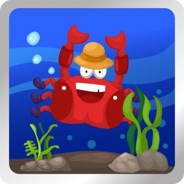 Hermit crab underwater background