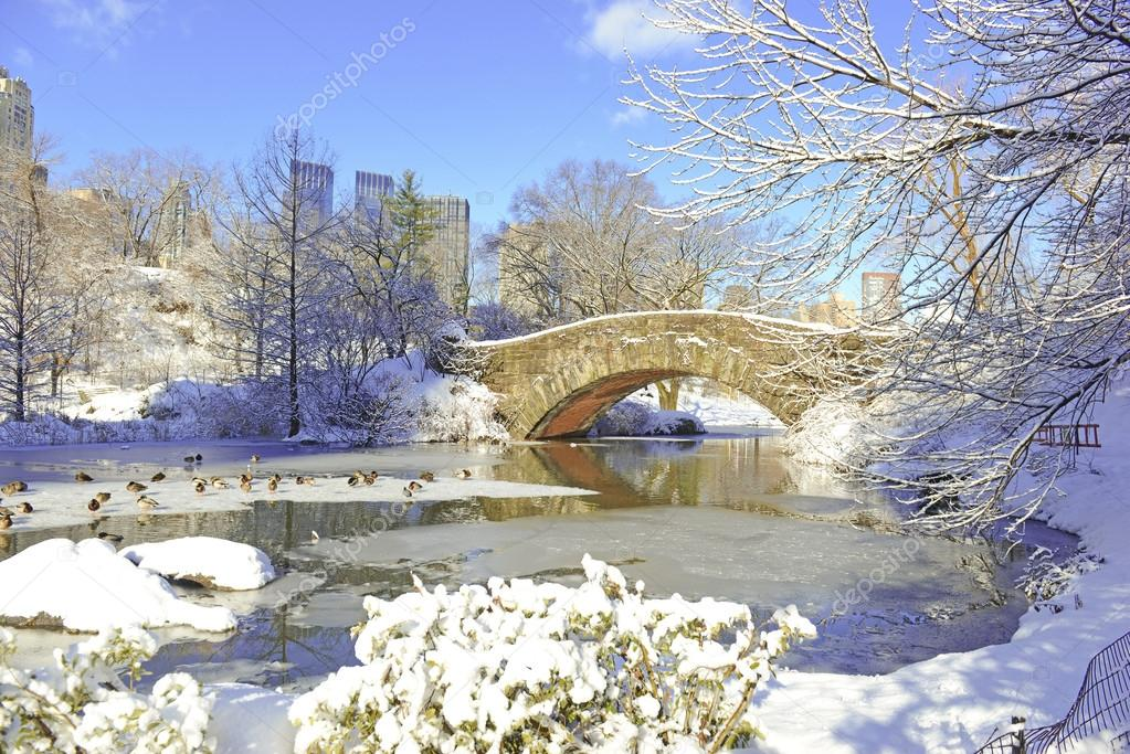 Snow in Central Park and Manhattan Skyline,  New York City