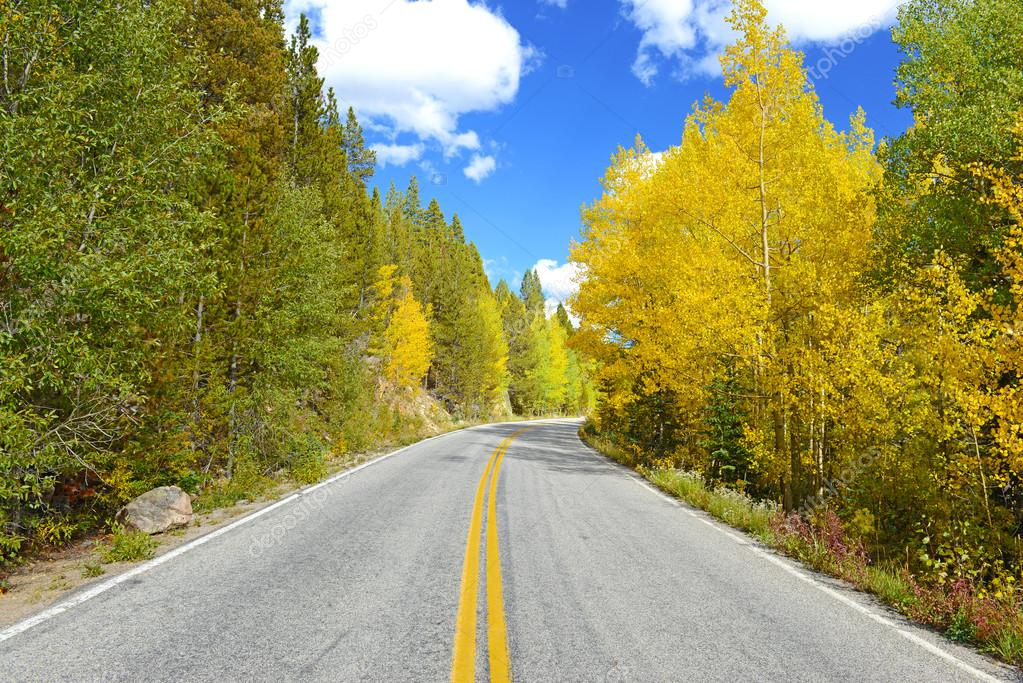 Golden Aspen and Fall Foliage in the Rocky Mountains