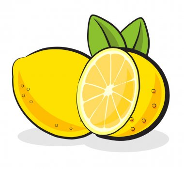 Lemon Fruit Vector Illustration