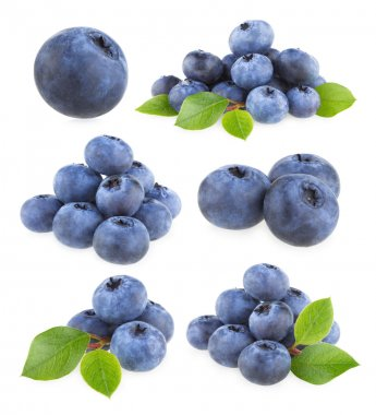 Collection of 9 blueberries