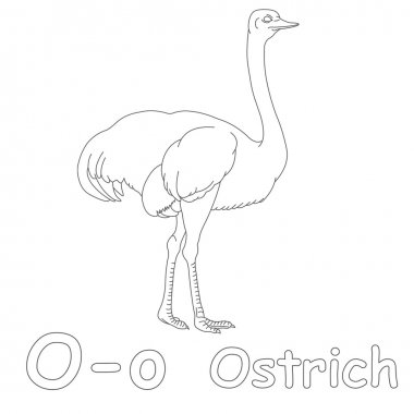 O for Ostrich Coloring Page