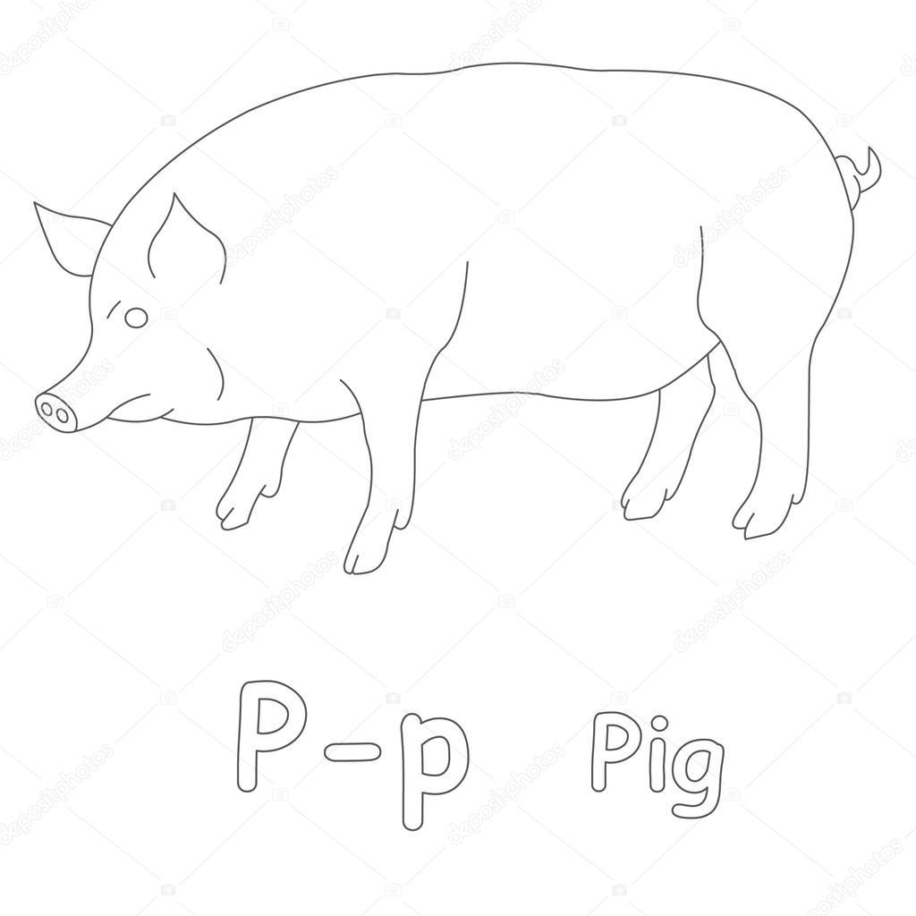 p para colorear página de cerdo — Foto de stock © Art1o1 #44628323
