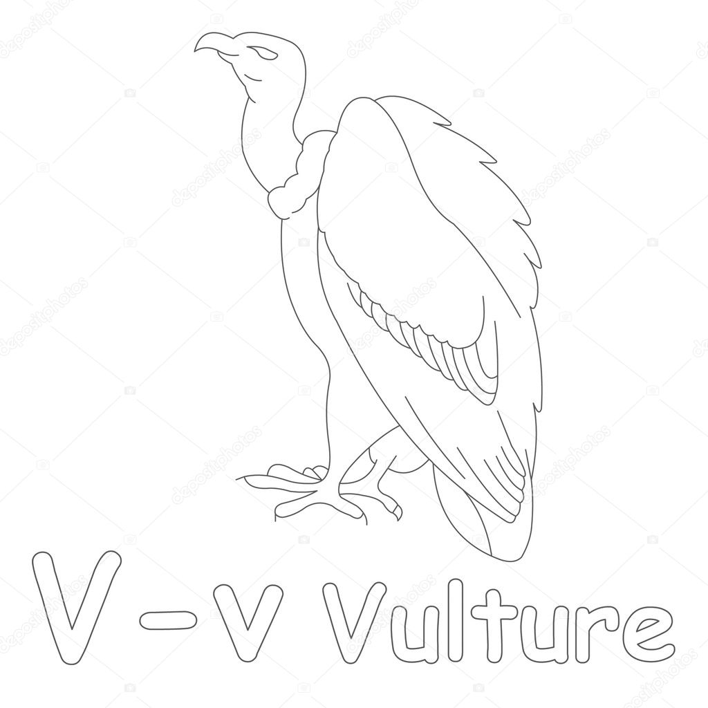 V for Vulture Coloring Page — Stock Photo © Art1o1 #44628341