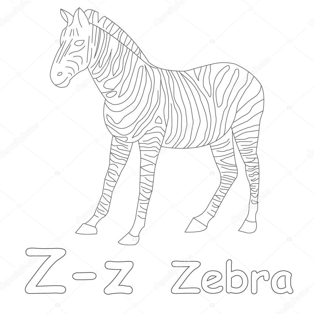 Z Boyama Sayfası Zebra Için Stok Foto Art1o1 44628349