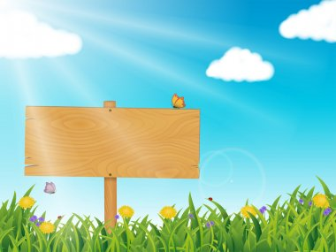 Spring Summer Scene, with grass, flowers, blue sky, fluffy clouds and Wooden Sign Post