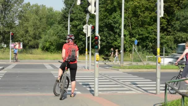 Cyclists and pedestrians waiting at traffic lights - busy urban street with cars