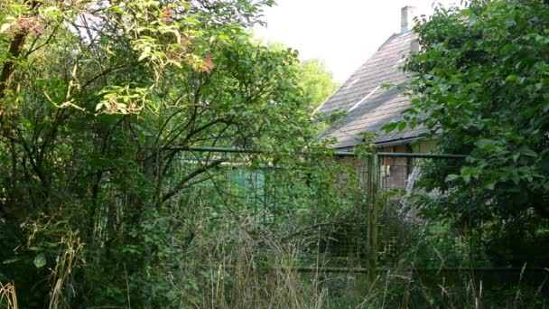 Old cottage building - overgrown with nature (bushes, trees and grass) - gate