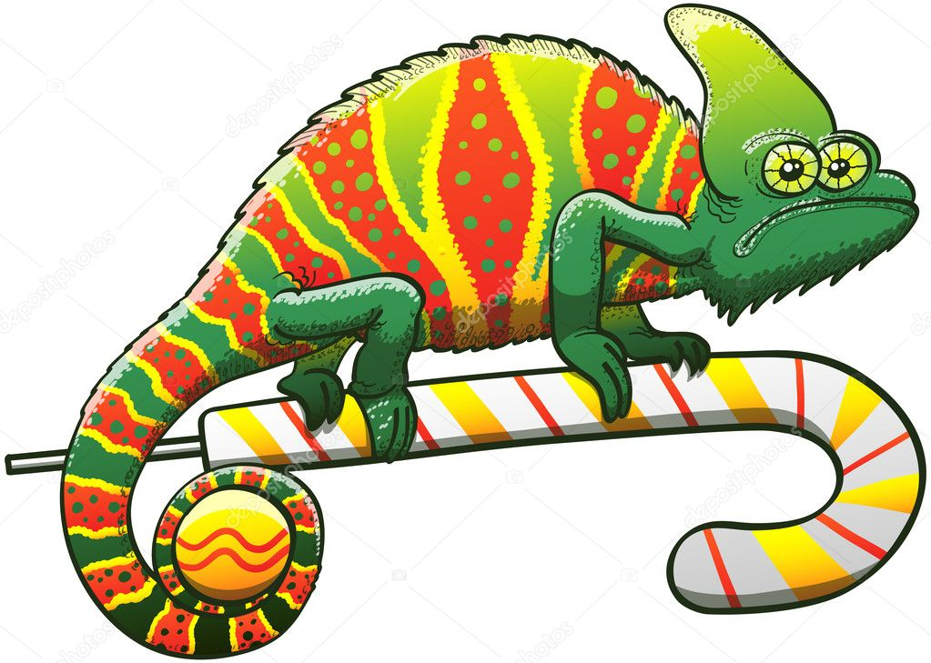 Chameleon exhibiting a Christmas camouflage