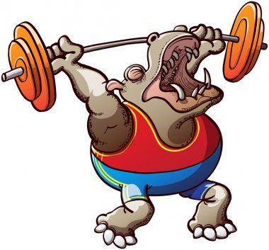 Hippopotamus lifting the weight plates