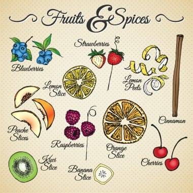 FRUITS & SPICES - hand drawn elements