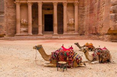 Petra. Camels at the Treasury
