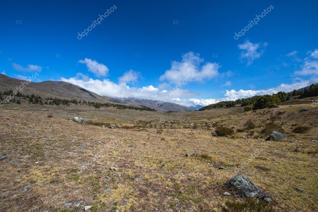 Berge De Merida Anden Venezuela Stockfoto C Olegmj 51648419