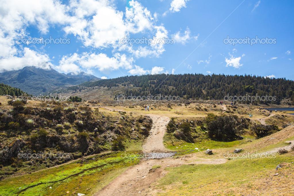 Berge De Merida Anden Venezuela Stockfoto C Olegmj 51656301