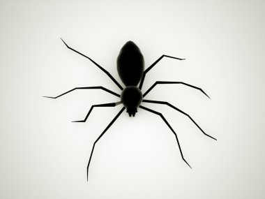 Spider black rendered
