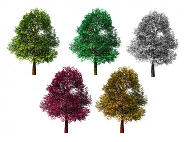 Five isolated colored trees on white background stock vector